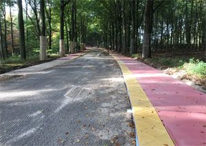 CROW Infra-Innovatiecafé Biobased wegen en fietspaden