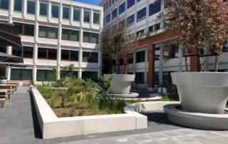beton met olifantsgras