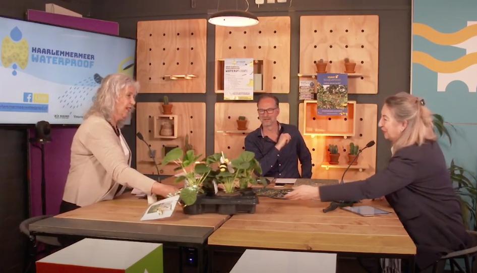 Haarlemmermeerse wethouder Mariëtte Sedee verruilt een tegel uit haar tuin voor stokrozen van Arjanne Lagendijk directeur van NMCX